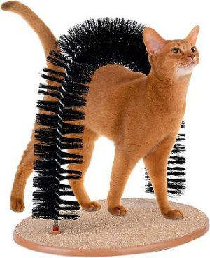 Kleeger Products Self-Grooming Arch Cat Toy - Chewy.com