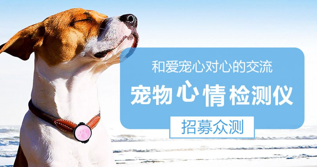 Petkit Monitor 宠物心情检测仪