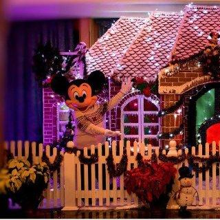 $600起  阳台房仅$820迪士尼邮轮 11月圣诞主题航线促销  纽约-圣胡安单线