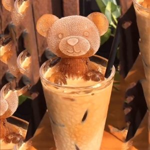 4.5折起 网红熊熊仅€3.7/个Amazon 冰块模具 夏季冷饮刚需 有3D泰迪熊、不锈钢冰块等