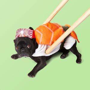低至4折Chewy 精选宠物万圣节服饰促销热卖