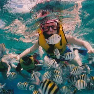 From $4454 Night Western Caribbean Cruise