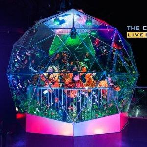 现价£95/双人起(原价£168)The Crystal Maze 风靡全英 正宗密室逃脱游戏限时折上折