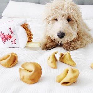 低至$3 + 独家任意单包邮Barkshop 狗狗零食玩具热卖