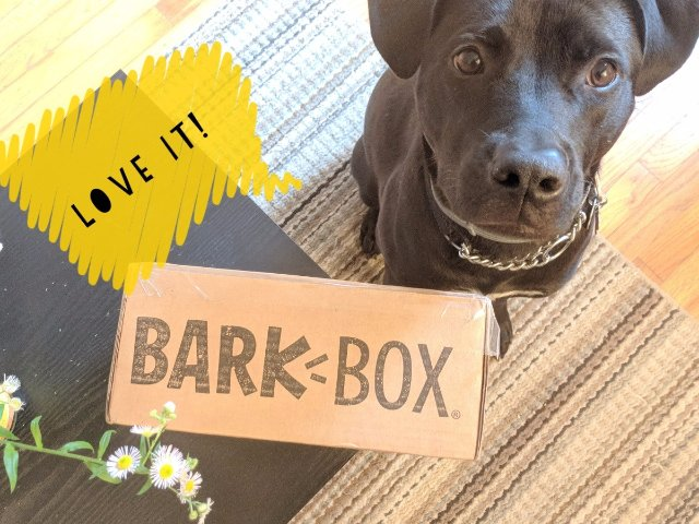 Barkbox, 狗子和你都值得拥有