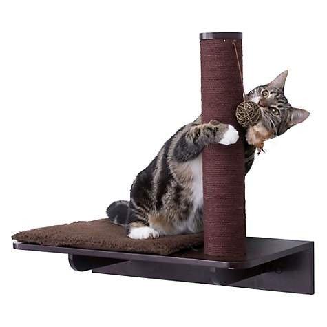 墙壁猫抓柱