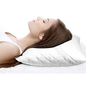 $39.99起+包邮限今天:WonderSleep 高度可调记忆枕头枕套热卖 2件装