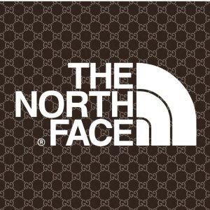 New ReleaseGucci x The North Face Collaboration