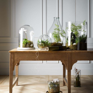 Free ShippingArhaus Selected Decor Products on Sale