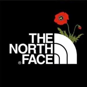 2件78折 £19.5买经典百搭款闪购:The Hut  北脸男式短袖热卖 感受户外的魅力