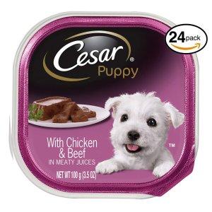 6折起限今天:精选狗狗用品热卖 狗粮、零食、玩具等都参加