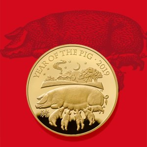 无门槛9折 1/10盎司纯金The Royal Mint皇家铸币厂收藏币 找到你的生肖币