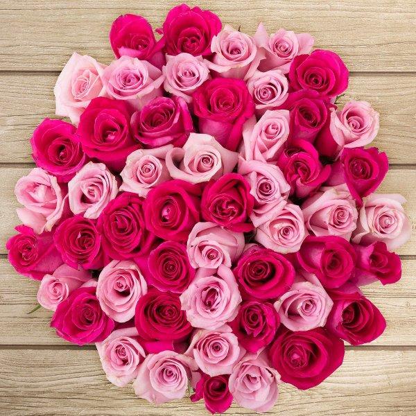 预定红粉玫瑰花束50支