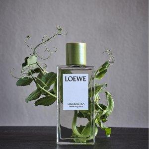全场无门槛8.5折!Loewe 室内香水霸哥价!精致生活必备!奢侈的大自然香味!
