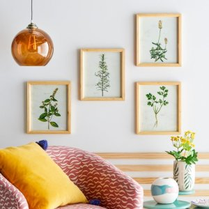Drew Barrymore Flower HomeHerb Framed Wall Art by Drew Barrymore Flower Home - Set of 4