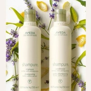 20% OffShampure and Rosemary Mint Products @ Aveda