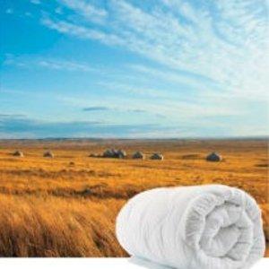 $47 (原价$197) 低于3折价折扣升级:Merino Wool 澳洲正宗羊毛被热卖 多款多个size可选