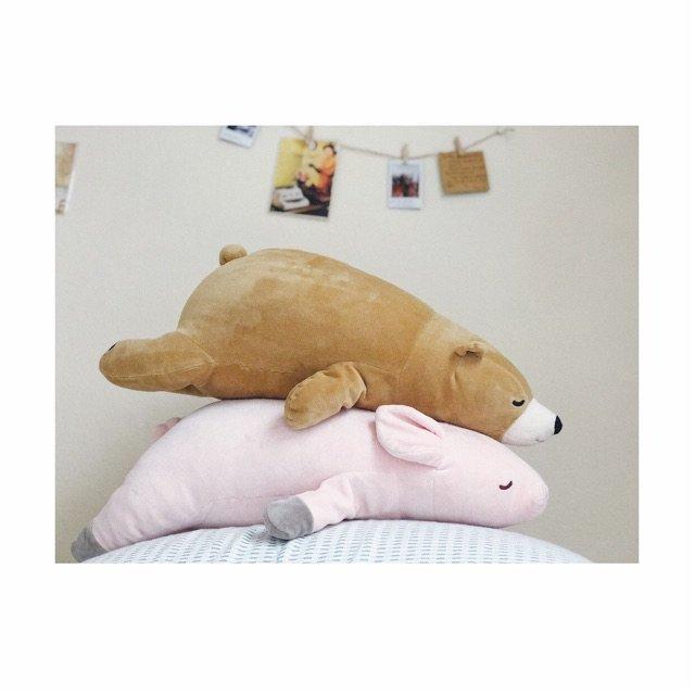 🐰🐻小兔和小熊抱枕已经陪伴我两年啦...